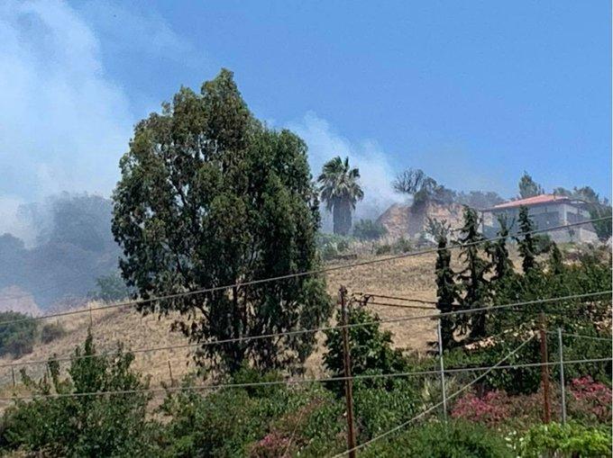 Πυρκαγιά ΤΩΡΑ σε δασική έκταση στην Σιθωνία Χαλκιδικής