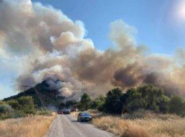 44 Δασικές πυρκαγιές εκδηλώθηκαν το τελευταίο 24ωρο