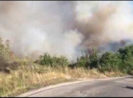 Πυρκαγιά ΤΩΡΑ σε εξέλιξη στα Αμπελάκια Σαλαμίνας – Κοντά σε σπίτια η πυρκαγιά