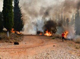 Πυρκαγιές στην Αχαΐα: Οριοθετήθηκε το μέτωπο στη Δροσιά – Σε ύφεση η πυρκαγιά στην Ελεκίστρα