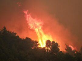 Δασική πυρκαγιά σε εξέλιξη στην περιοχή Εμμανουήλ Παππα στης Σέρρες