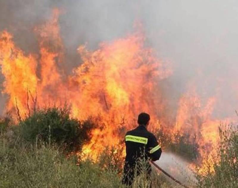 Δήμος Θερμαϊκού: Πυρκαγιά στην Αγ. Τριάδα κοντά σε κατοικημένη περιοχή