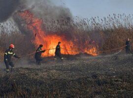 Πυρκαγιά εν υπαίθρω στην  Σίνδο Θεσσαλονίκης