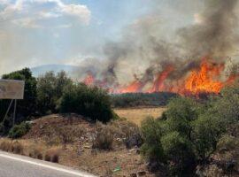 Πυρκαγιά σε εξέλιξη σε δασική έκταση στα Γρεβενά