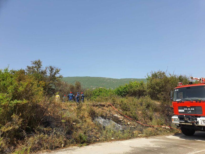 Πυρκαγιά στην Δωδώνη Ιωαννίνων - Άμεση η επέμβαση της Πυροσβεστικής