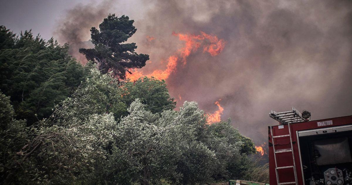 Πυρκαγιά ΤΩΡΑ σε Δασική έκταση κοντά στην περιοχή Κερασιές στην Έδεσσα