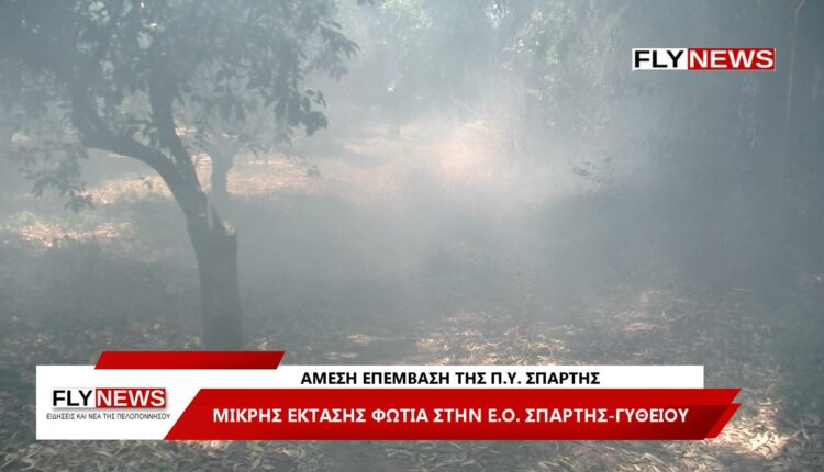 Πυρκαγιά στην Ε.Ο Σπάρτης – Γυθείου (Φώτο)