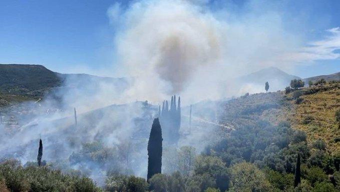 Πυρκαγιά στην Κεφαλονιά: Τρία τα μέτωπα της φωτιάς σήμερα - Ενισχύθηκαν οι δυνάμεις της Πυροσβεστικής