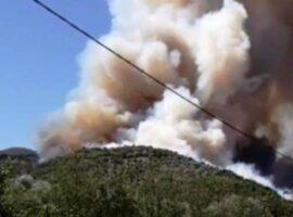 Μεγάλη πυρκαγιά ΤΩΡΑ στη Δροσιά Αχαΐας