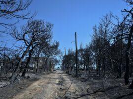Πυρκαγιά – Μάτι: Αποκαλυπτικοί διάλογοι για το πώς «ξέφυγε» η πυρκαγιά