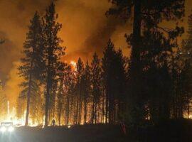 ΗΠΑ: Πάροχος ηλεκτρικού ρεύματος κατηγορείται για μεγάλη πυρκαγιά
