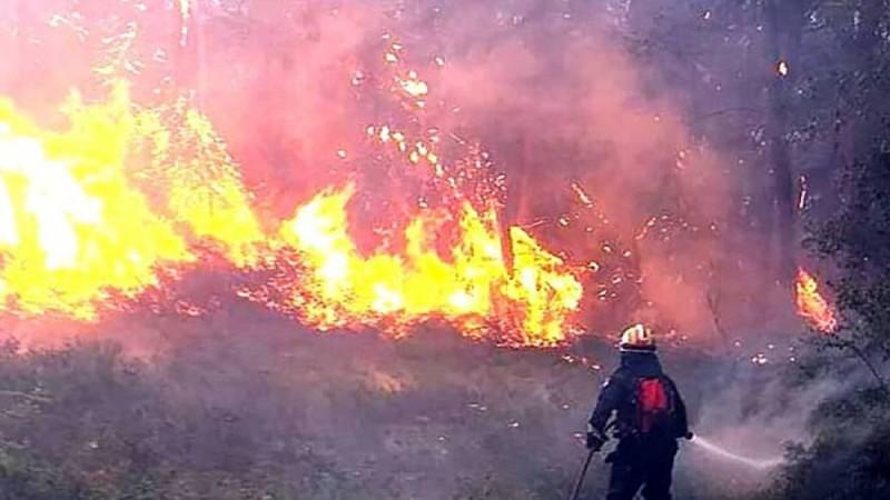 Σε εξέλιξη πυρκαγιά σε αγροτοδασική έκταση στην Βόλβη Θεσσαλονίκης