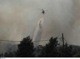Πυρκαγιά στη Σταμάτα: Τέσσερις προσαγωγές υπόπτων – Τα ενδεχόμενα που ερευνούν οι διωκτικές αρχές