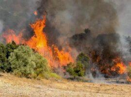 20 Δασικές πυρκαγιές εκδηλώθηκαν το τελευταίο 24ωρο