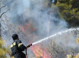 Κόρινθος: Μια σύλληψη για την φωτιά στο Καλέντζι -Σε εξέλιξη η πυρκαγιά