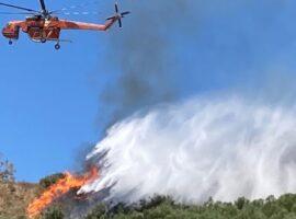 Πυρκαγιά ΤΩΡΑ σε δασική έκταση στην περιοχή Βαθροβούνι Χαλκίδας
