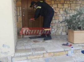 Πυρκαγιά στην Αχαΐα: Συγκινητική κίνηση πυροσβέστη – Δίνει νερό σε σκυλάκι που κάηκε το σπίτι του
