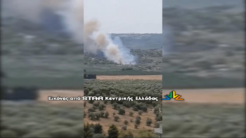 Πυρκαγιά ΤΩΡΑ σε δασική έκταση στον Θεολόγο Φθιώτιδας - Εκκενώνεται ο οικισμός ΟΣΜΑΕΣ