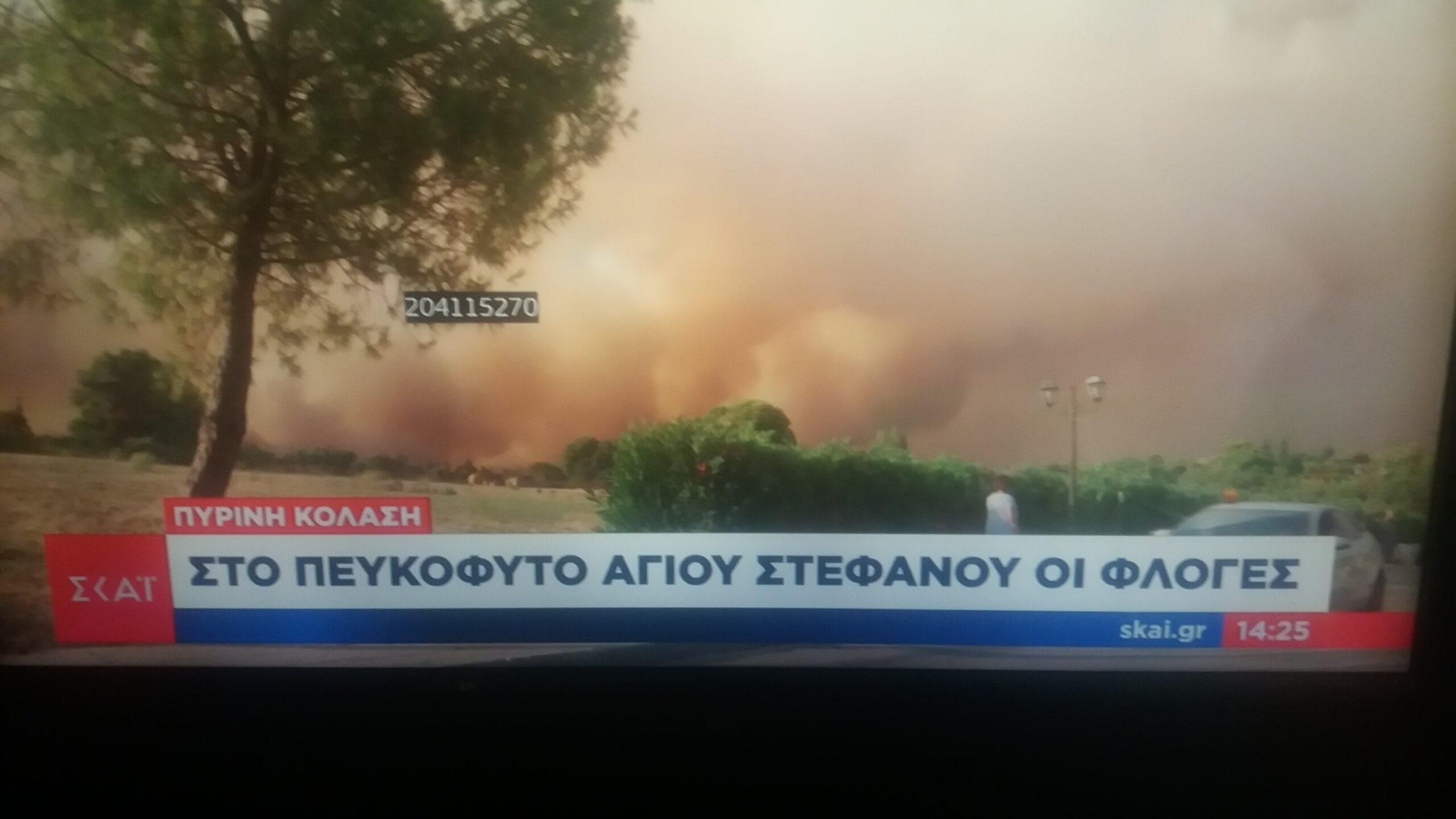 ΕΚΤΑΚΤΟ: Εισήγηση της Πυροσβεστικής να εκκενωθεί η Λίμνη Μαραθώνα-Πυρκαγιά και στον Άγιο Στέφανο