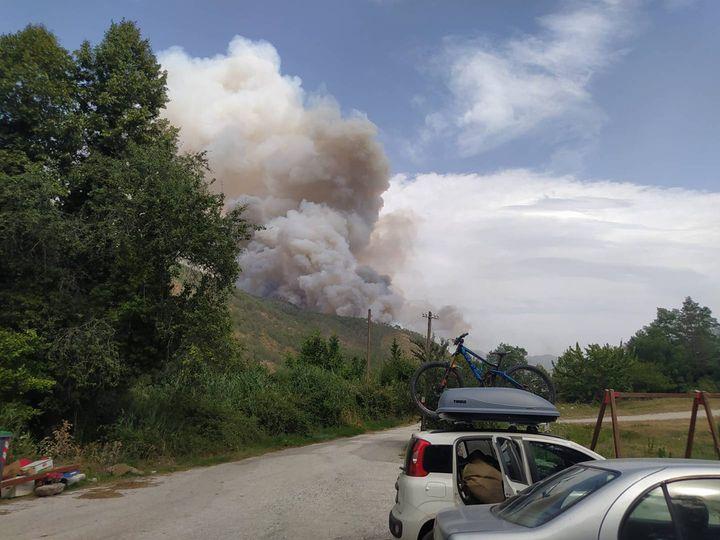 Πυρκαγιά σε δασική έκταση στους Πάδες Κόνιτσας