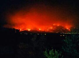 Πυρκαγια στη Μεσσηνία: Ανεξέλεγκτο προς το βουνό το πύρινο μέτωπο (Φώτο)