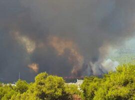Πυρκαγιά ΤΩΡΑ σε δασική έκταση στη Βαρυμπόμπη Αττικής