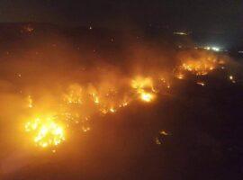 Σε ύφεση οι πυρκαγιές σε Ρόδο, Φθιώτιδα, Μεσσηνία και Εβρο