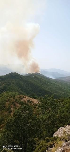 Πυρκαγιά σε δασική έκταση στη θέση Λημέρι στον Άγιο Νικόλαο Φιλιατών