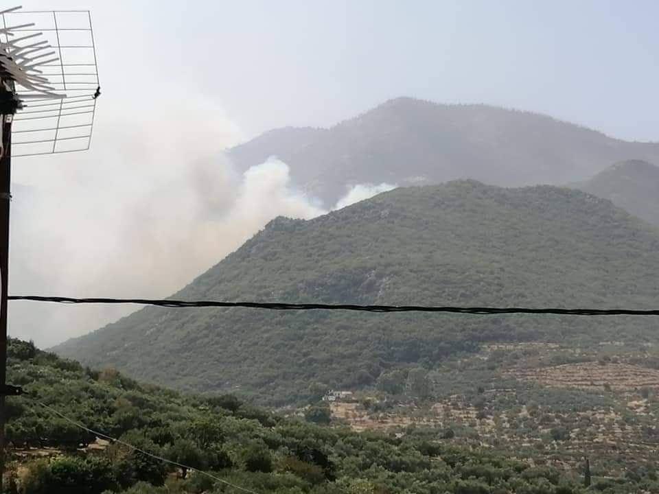 Πυρκαγιά στη Λακωνία - Μεγάλες αναζωπυρώσεις κοντά στο Σελεγούδι και στα Κόκκινα Λουριά