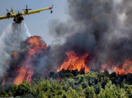 Πυρκαγιά σε εξέλιξη στην Οινόη Κοζάνης