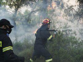 Πυρκαγιά εν υπαίθρω στα Αμπελάκια στην Σαλαμινα Αττικής