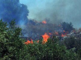 Πυρκαγια εν υπαίθρω στα λουτρά Αλίμου