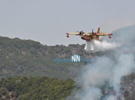 Αναζωπυρώθηκε η πυρκαγιά στο Παραδείσι – Επιχειρούν 2 Canadair