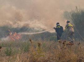 Πυρκαγιά εν υπαίθρω  στης Αχαρνές Αττικής
