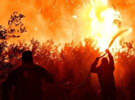 Πυρκαγιά σε χαμηλή βλάστηση στο Μαρτίνο Φθιώτιδας
