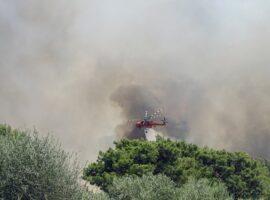 Πυρκαγιά στην Μεσσηνία: Εκκενώνεται οικισμός – Απειλείται μοναστήρι