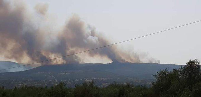 Μεγάλη πυρκαγιά ΤΩΡΑ σε δασική έκταση στην περιοχή Βασιλίτσι Μεσσηνίας