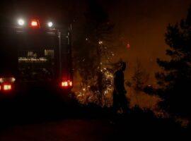 Πυρκαγιά στη Φθιώτιδα: Μάχη με τις αναζωπυρώσεις δίνουν οι πυροσβέστες
