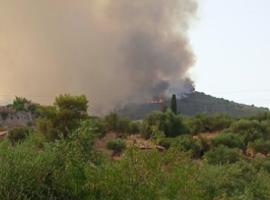 Σε ύφεση η πυρκαγιά στη Μεσσηνία – Ισχυρές πυροσβεστικές δυνάμεις στην περιοχή
