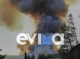 Πυρκαγιά σε δασική έκταση στην περιοχή Μυρτιάς Ευβοίας  – Εκκενώνονται δύο χωριά