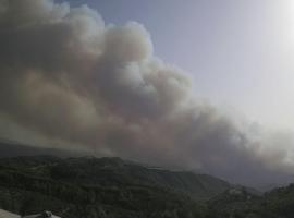 Πυρκαγιά στην Ηλεία: Πληροφορίες για εγκλωβισμένους – Εκκενώνεται η Αρχαία Ολυμπία