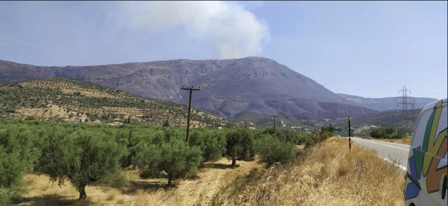 Πυρκαγιά στη Φωκίδα: Ενεργό το μέτωπο – Απειλούνται χωριά