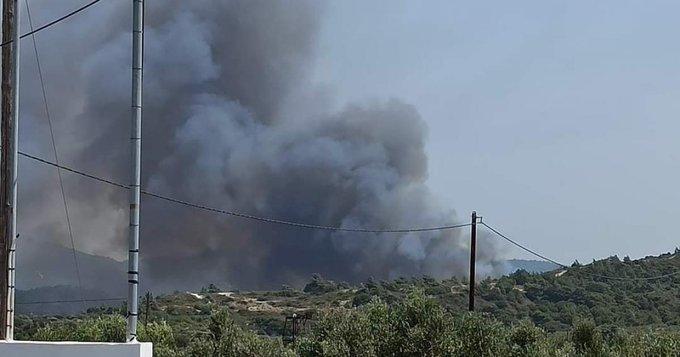 Πυρκαγιά ΤΩΡΑ σε δασική έκταση στην Παντάνασσα Ρόδου (Φώτο)