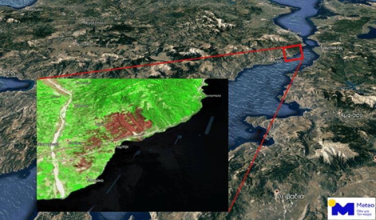 Αχαΐα: Στάχτη πάνω από 3.000 στρέμματα από την καταστροφική πυρκαγιά