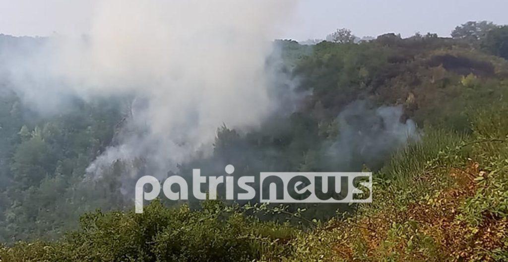 Πυρκαγιά στη Ηλεία: Νέα αναζωπύρωση στη θέση Δερβενακίων στο χωριό Δούκα