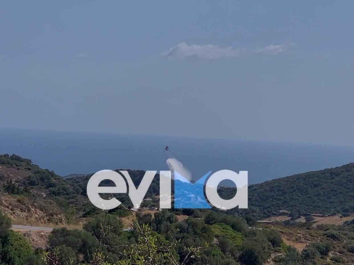 evoia 3