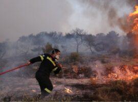 Πυρκαγιά έν υπαίθρω στο Σοφικό Κορινθίας