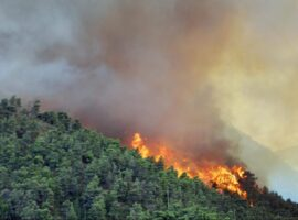 Πυρκαγιά σε δασική περιοχή στο όρος Κιτίκι στα Φάρσαλα