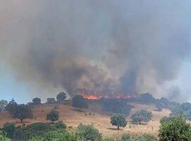 Μεγάλη πυρκαγιά στην Κω – Απειλείται κατοικημένη περιοχή