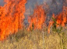 Θεσσαλονίκη: Πυρκαγιά σε ξηρά χόρτα στο Πλαγιάρι